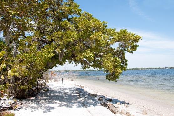De Soto beach in Florida
