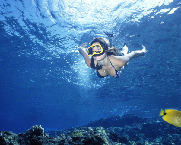 Snorkelling in the waters of Maui