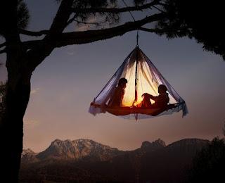 treetop camping